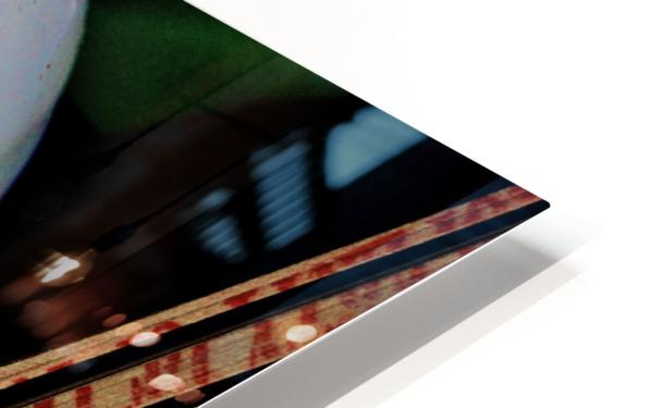 Gross Aroundings HD Sublimation Metal print