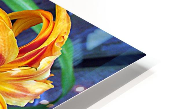 Day Lilies HD Sublimation Metal print