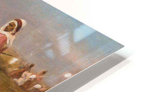 Oasis HD Sublimation Metal print