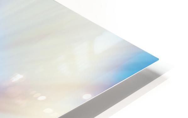 Dandelion HD Sublimation Metal print
