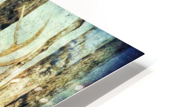 Dans les bois HD Sublimation Metal print