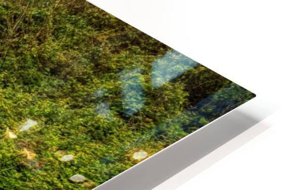 Life is Abundant HD Sublimation Metal print