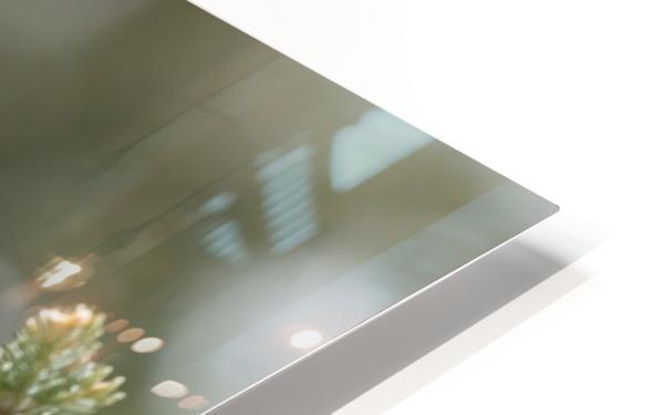 Lexploratrice Impression de sublimation métal HD