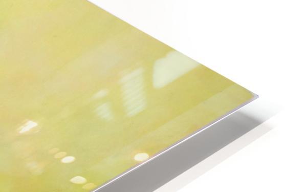 Realm of the Senses V HD Sublimation Metal print
