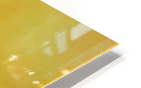 Exalted II HD Sublimation Metal print