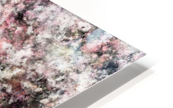 Coral HD Sublimation Metal print