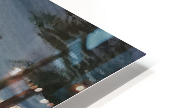 Born On The Bayou HD Sublimation Metal print