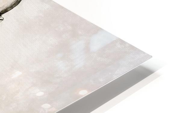 Chester Bennington HD Sublimation Metal print