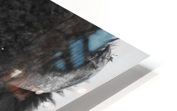 7893 - Buffalo HD Sublimation Metal print