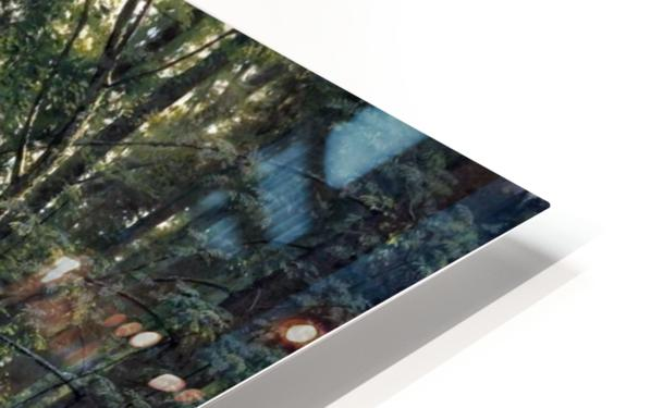 Stream by a forest slope HD Sublimation Metal print