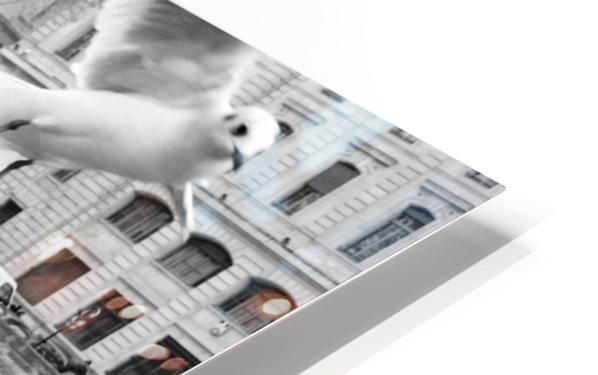 Les Oiseaux HD Sublimation Metal print