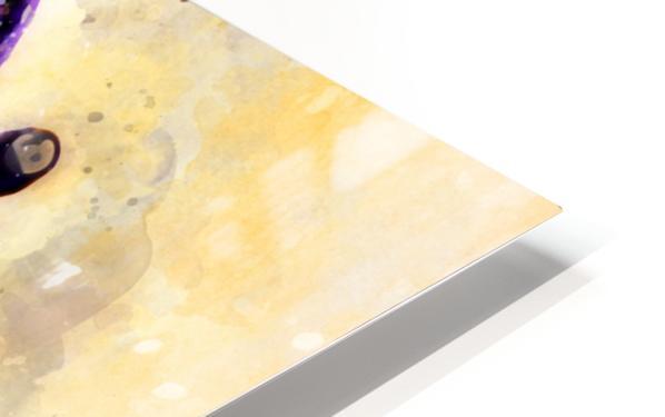 18 HD Sublimation Metal print