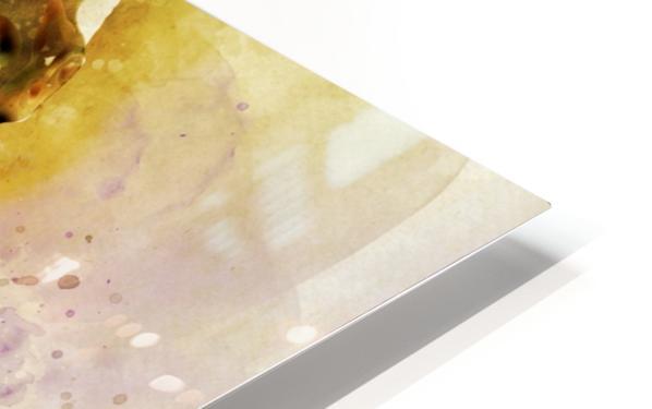 ed HD Sublimation Metal print