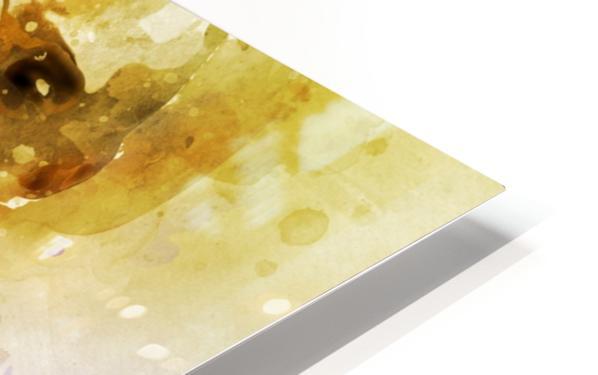 455 HD Sublimation Metal print