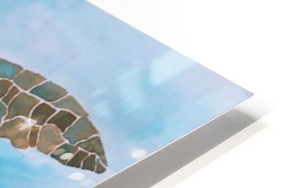 Turtle Island Breaths Again HD Sublimation Metal print