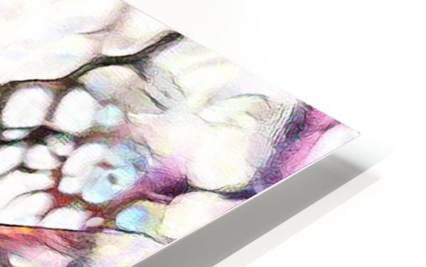 012 HD Sublimation Metal print