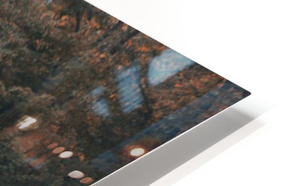 La dame du lac 2 HD Sublimation Metal print