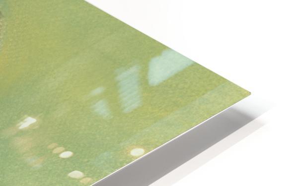 Sunny Sparrow HD Sublimation Metal print