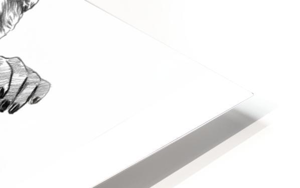 Selena Gomez - Celebrity Pencil Art HD Sublimation Metal print