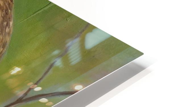 Bird of Prey HD Sublimation Metal print