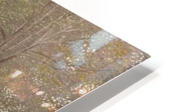 Derwent Walk HD Sublimation Metal print