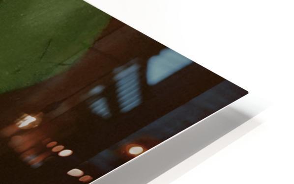 Lotus HD Sublimation Metal print