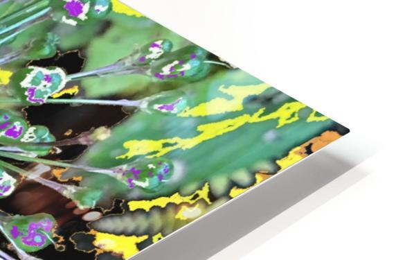 Alium with Purple HD Sublimation Metal print