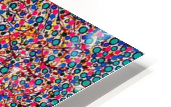 PicsArt_06 30 07.28.18 HD Sublimation Metal print