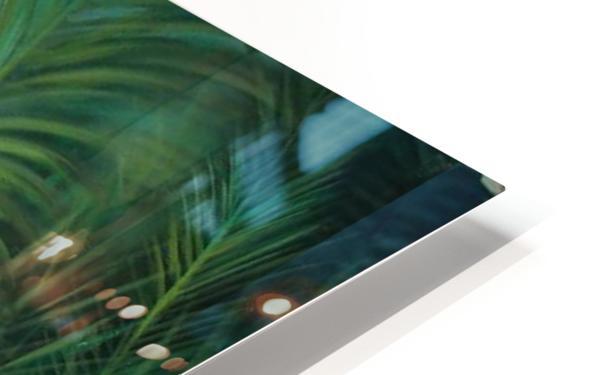 white heron 2 HD Sublimation Metal print