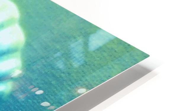 Blue Shell HD Sublimation Metal print