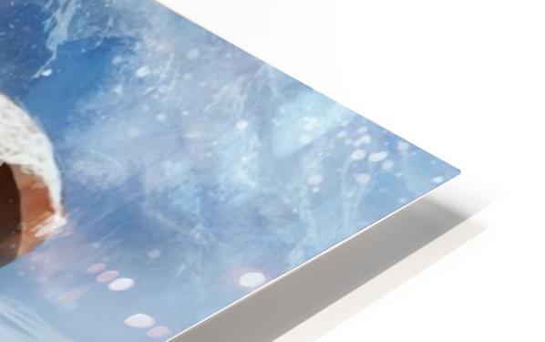 Lost Antarctida HD Sublimation Metal print