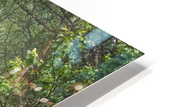 Enchanted HD Sublimation Metal print