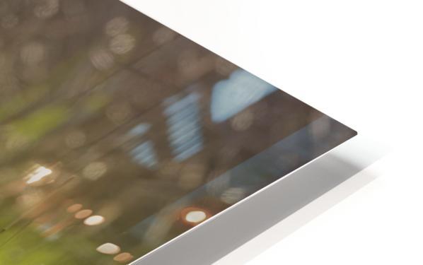 A contre jour   HD Sublimation Metal print