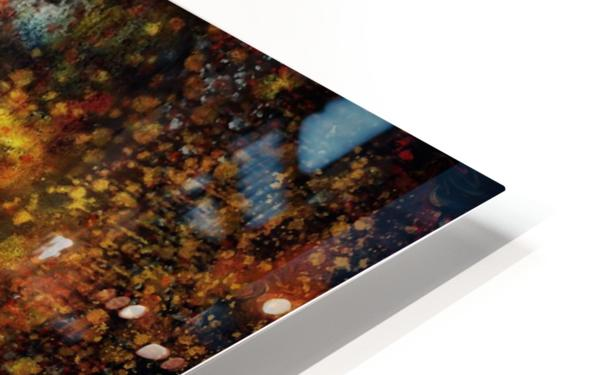 Untitled Abstract  HD Sublimation Metal print