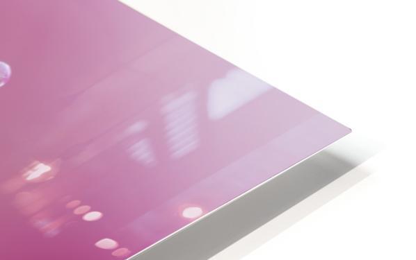 Pink Tulip II HD Sublimation Metal print