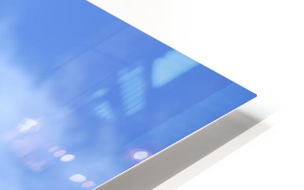 Seagull Overhead HD Sublimation Metal print