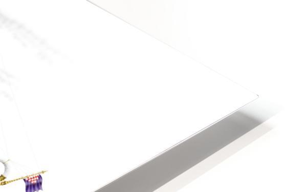 Crocciere Gondollino HD Sublimation Metal print