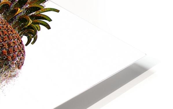 Pineapple Fountain - Charleston SC HD Sublimation Metal print