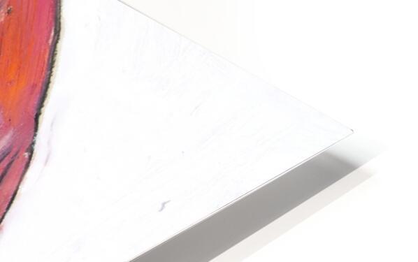 Louisiana Flamingo Study on Wood HD Sublimation Metal print