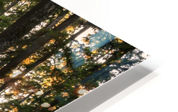 Wayfinder HD Sublimation Metal print