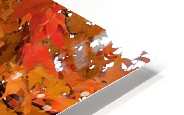 Autumn at Lake Superior HD Sublimation Metal print