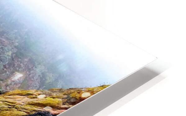 SEASIDE PATH HD Sublimation Metal print