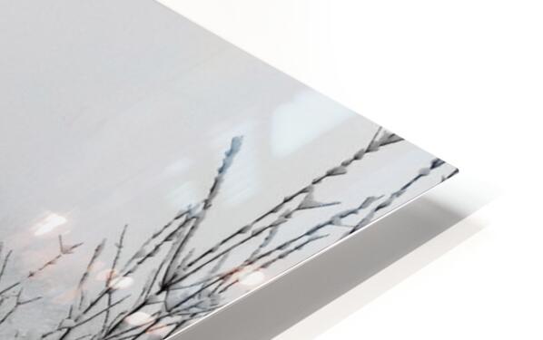 White Chapel-- Winter HD Sublimation Metal print