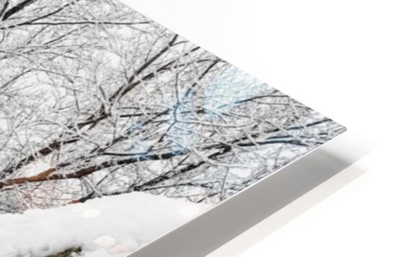 Parade Ground-- Winter HD Sublimation Metal print