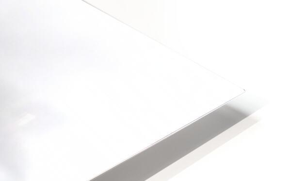 Lofoten 1 Stylized HD Sublimation Metal print