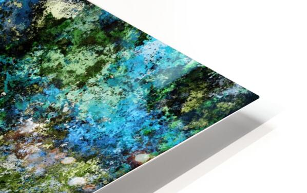 The wet and the moss HD Sublimation Metal print