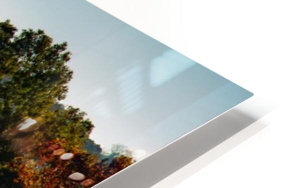 Missouri Morning HD Sublimation Metal print