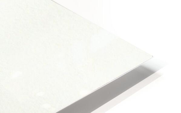 Spanish Lime HD Sublimation Metal print
