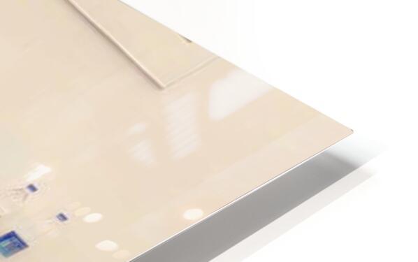 anjali 2 HD Sublimation Metal print
