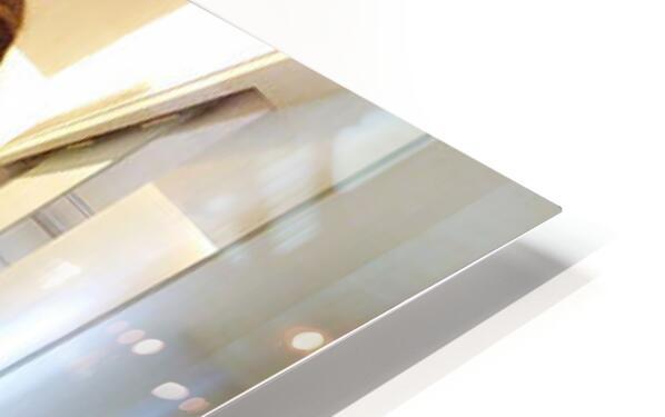 anjali 4 HD Sublimation Metal print